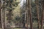 pastorendiek-naturschutzgebiet-4976