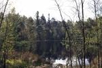 pastorendiek-naturschutzgebiet-4977