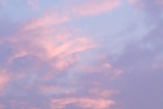 himmel-rosa