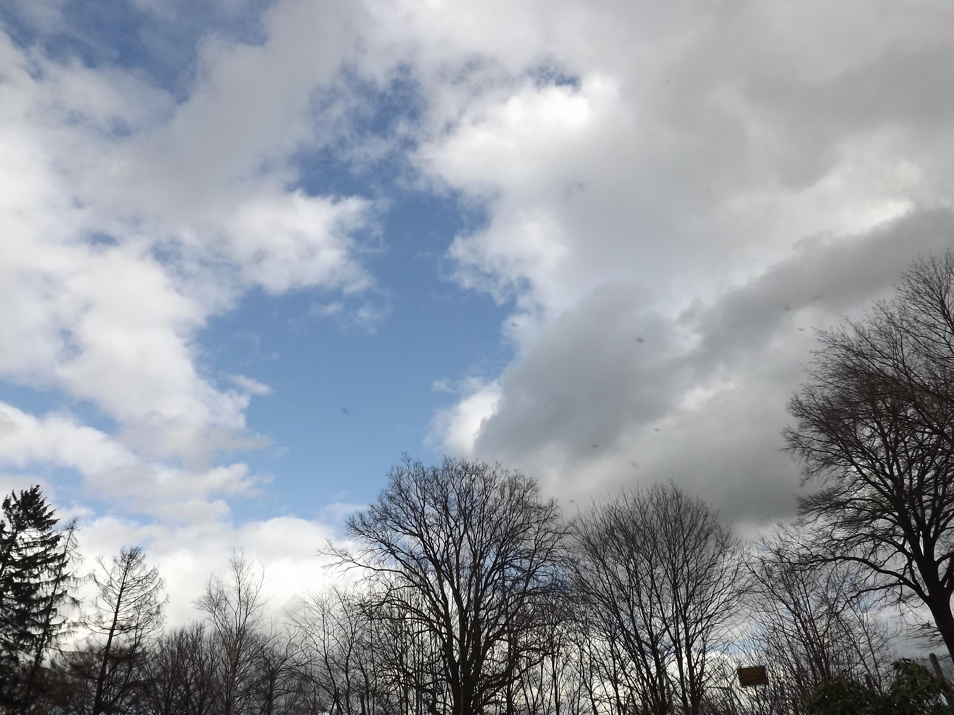 9104-wolken-himmel-kahle-baeume