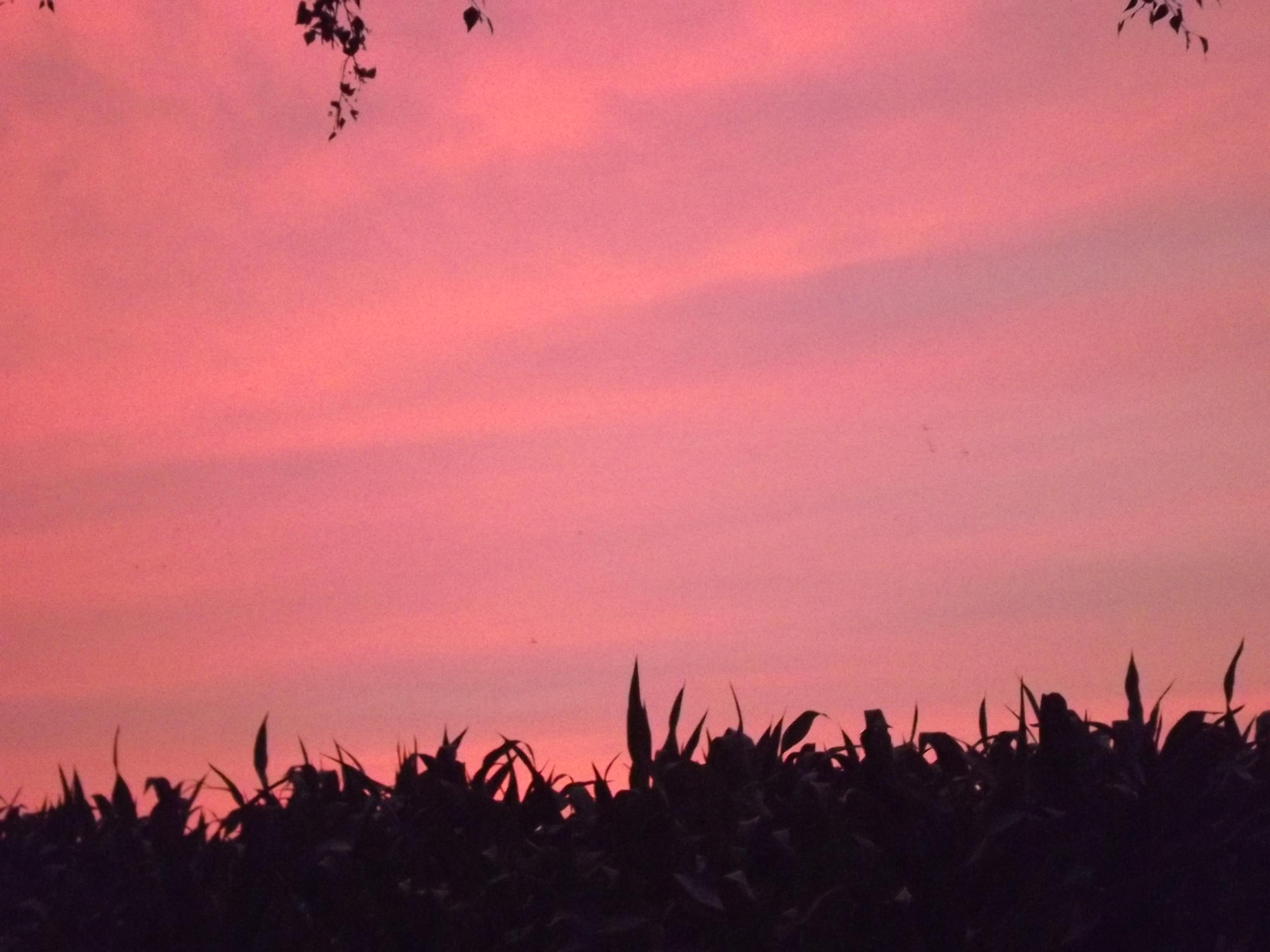 6270-himmel-wolken-rosa-blau-silhouette