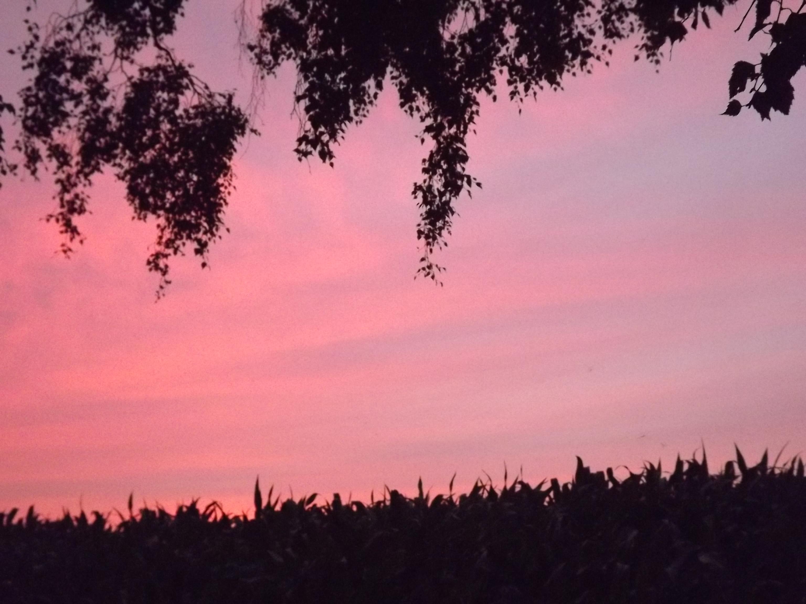 6272-himmel-wolken-rosa-blau-silhouette