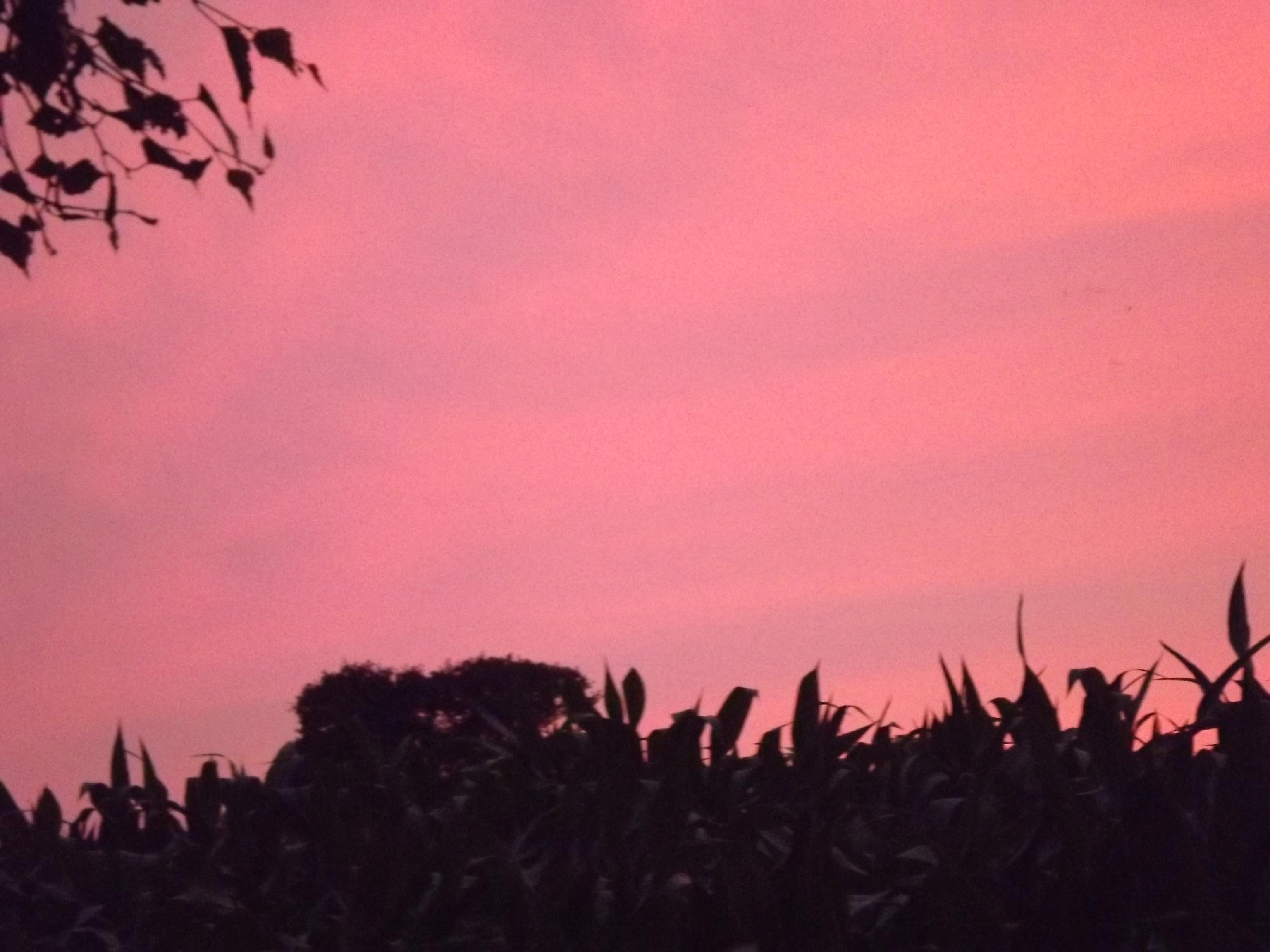 6273-himmel-wolken-rosa-blau-silhouette