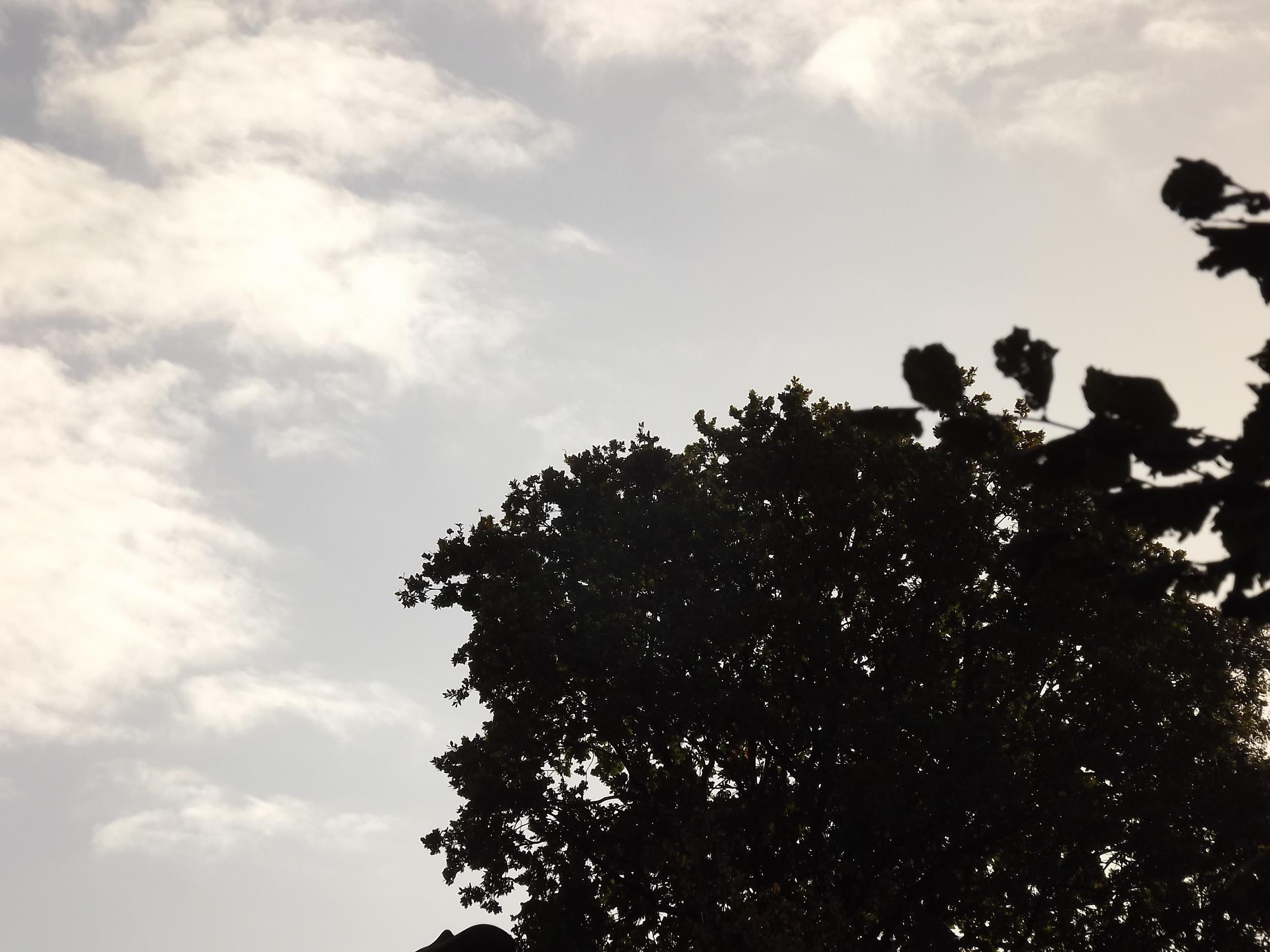 6516-himmel-blau-wolken-silhouette