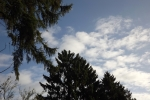 6507-himmel-blau-wolken-tannen