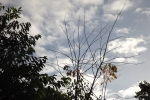 6523-himmel-blau-wolken-silhouette