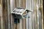 meise-sucht-korn-im-vogelhaus.jpg