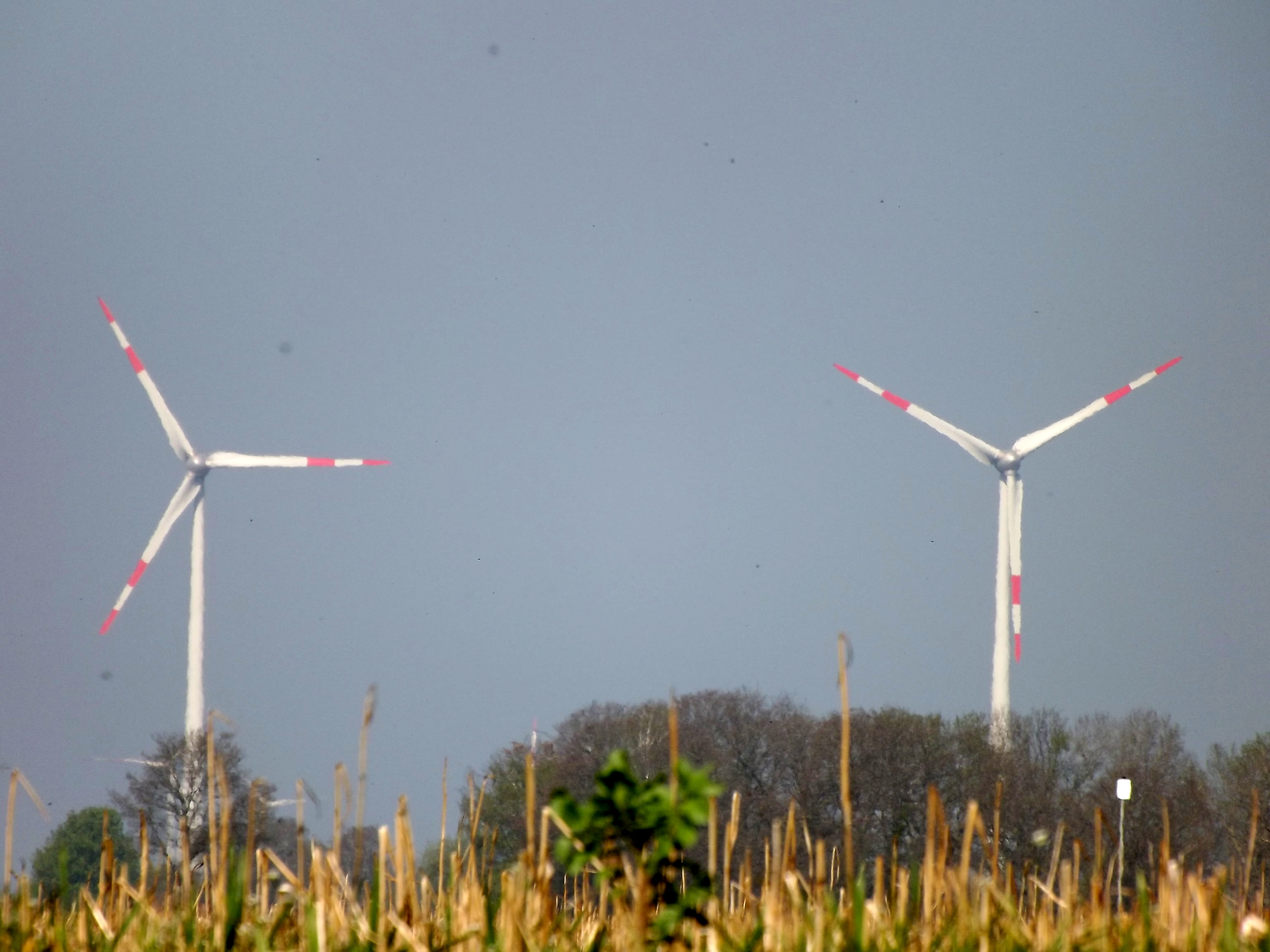5936-windraeder-himmel-feld