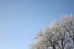 frostig-hintergrund-4720