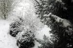 verschneite-landschaft-4632