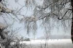 verschneites-feld-roddlern-4688