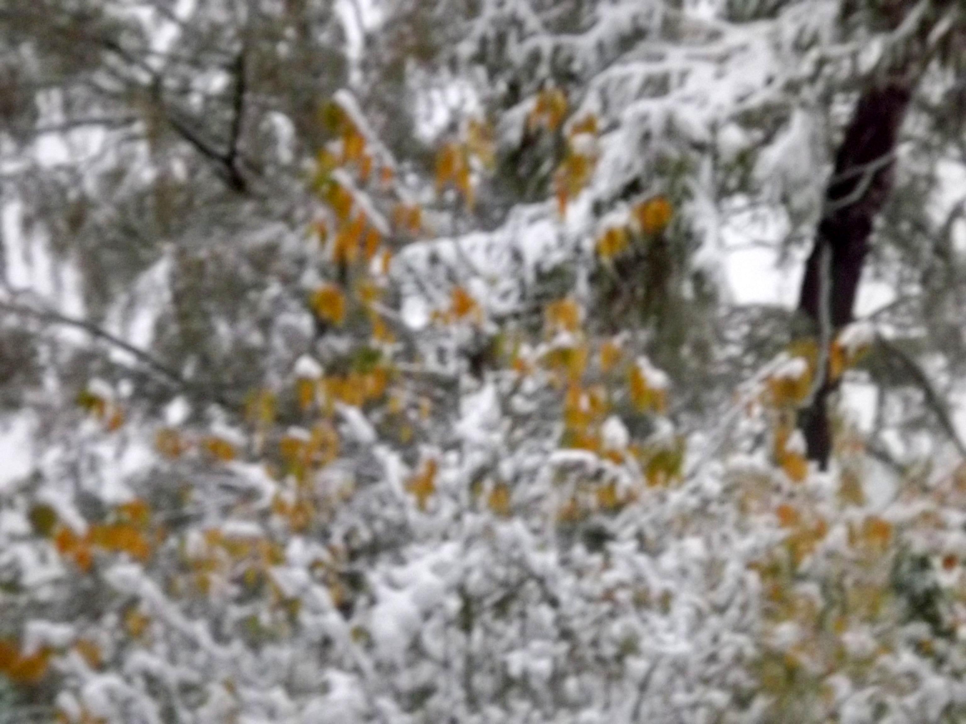 5600-schnee-und-eis