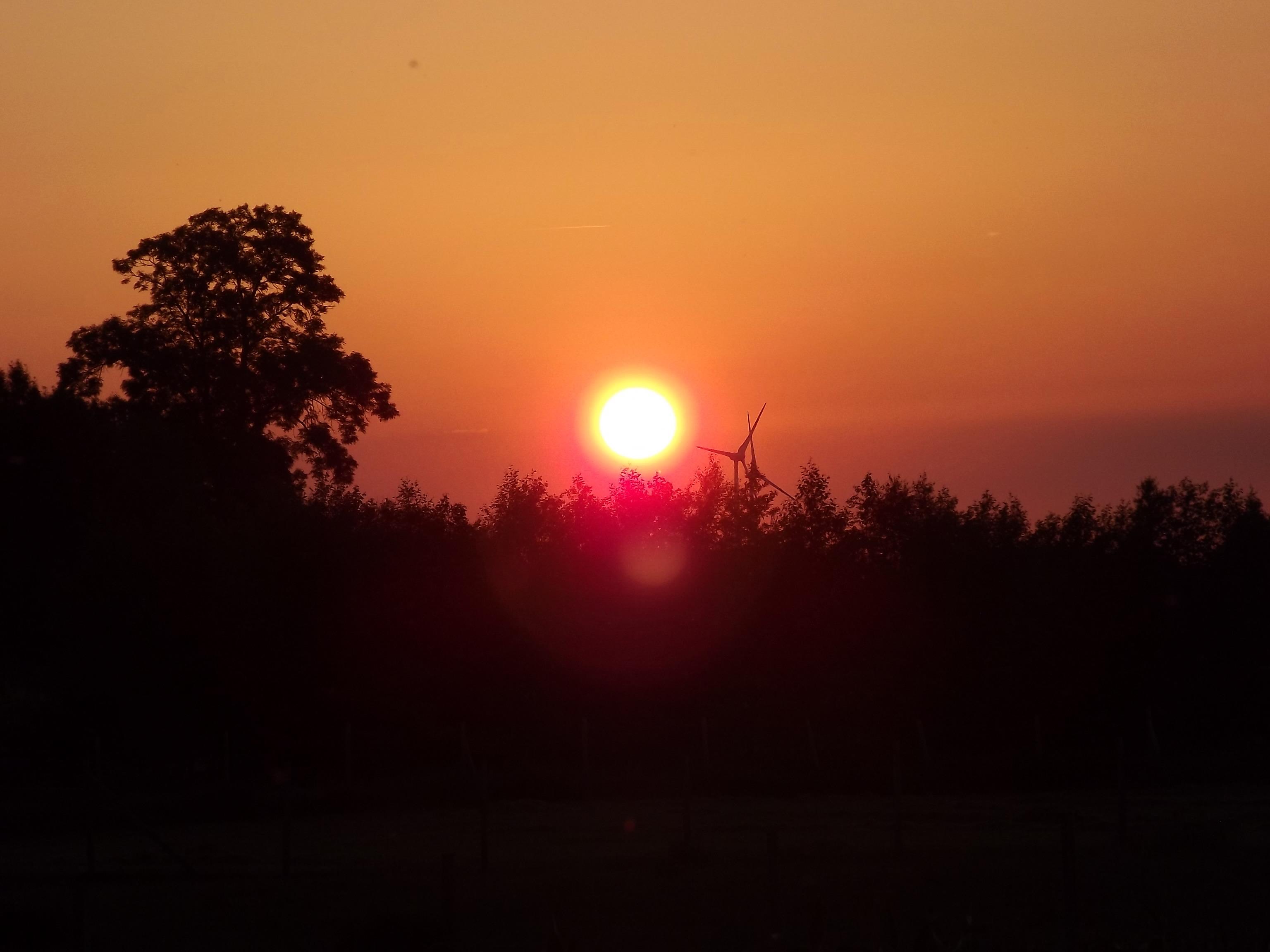 6245-sonnenaufgang-sonnenuntergang-wald-himmel