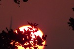 9328-sonnenaufgang-feuerball-zweig