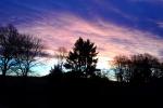 dunkel-hell-blau-rosa