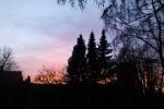 himmel-gluhen-baume