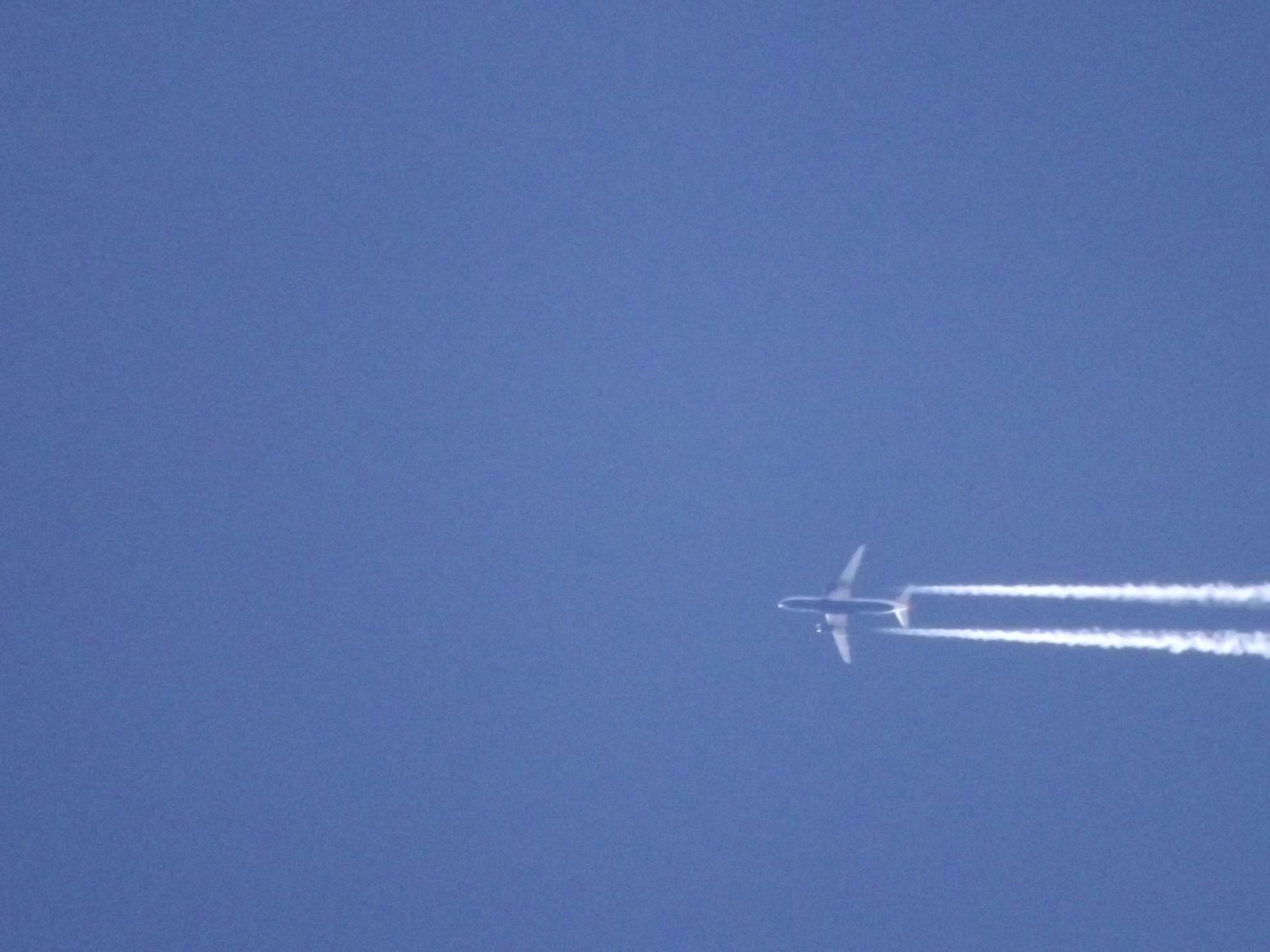 jet-blau-gruener-bauch-4737