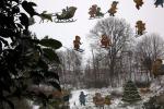 4602-winterbilder-fensterbilder-schnee