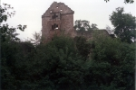 minneburg-wald2