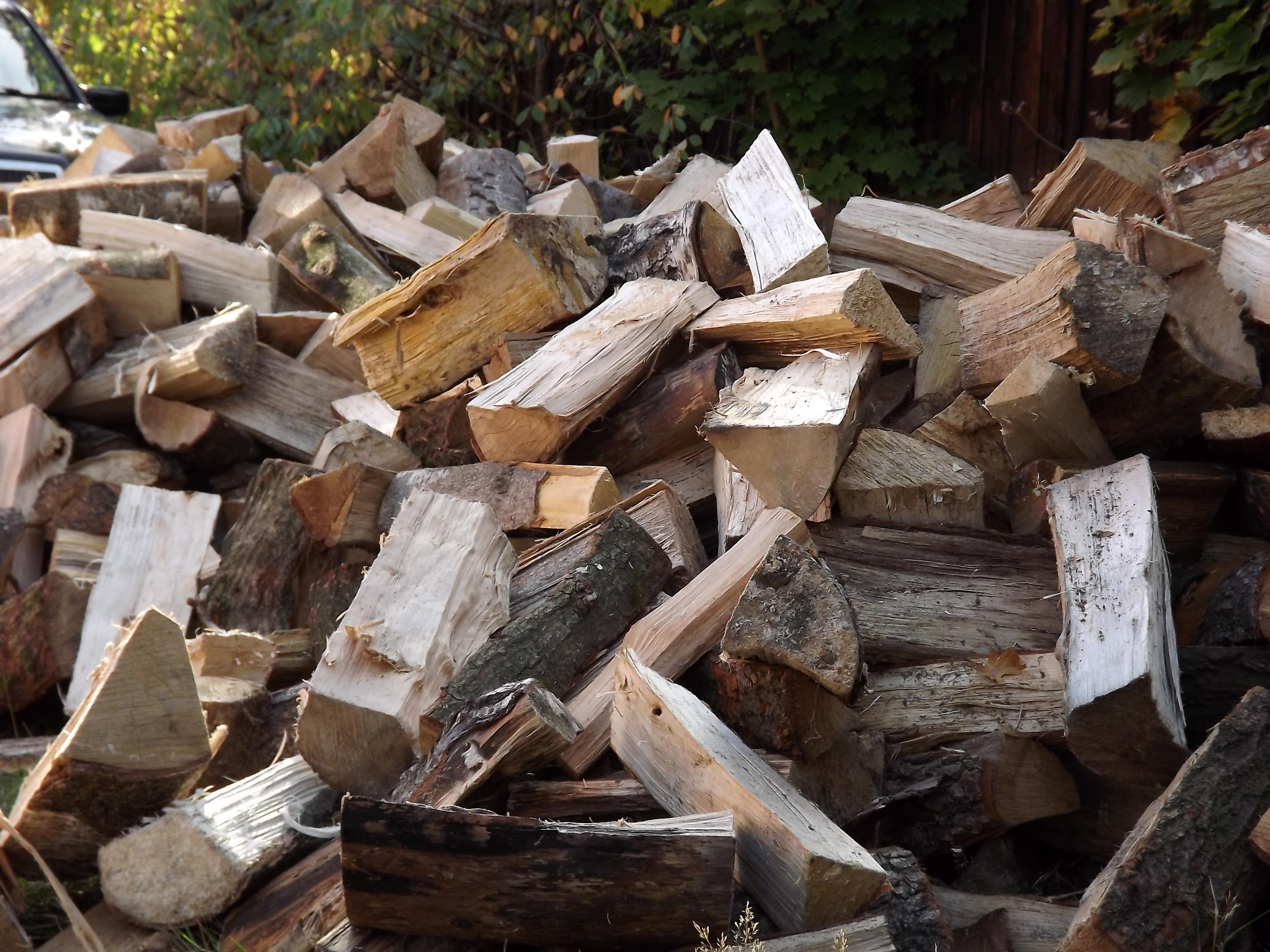 8014-holz-brennholz-scheite