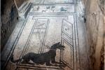 hund-mosaik-pompeij