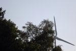 5496-baeume-windrad