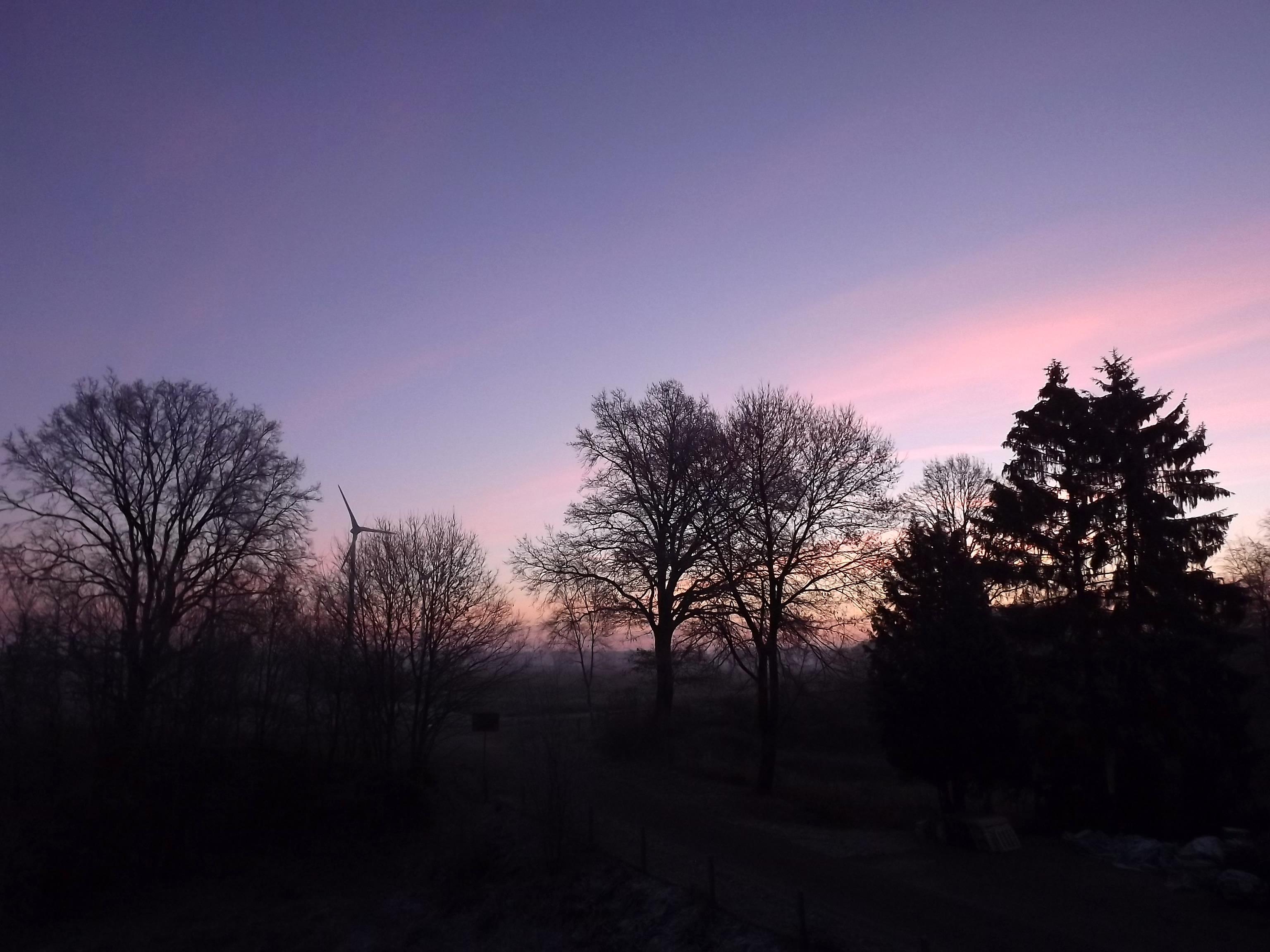 8402-frost-morgenhimmel-morgenroete-sonnenaufgang