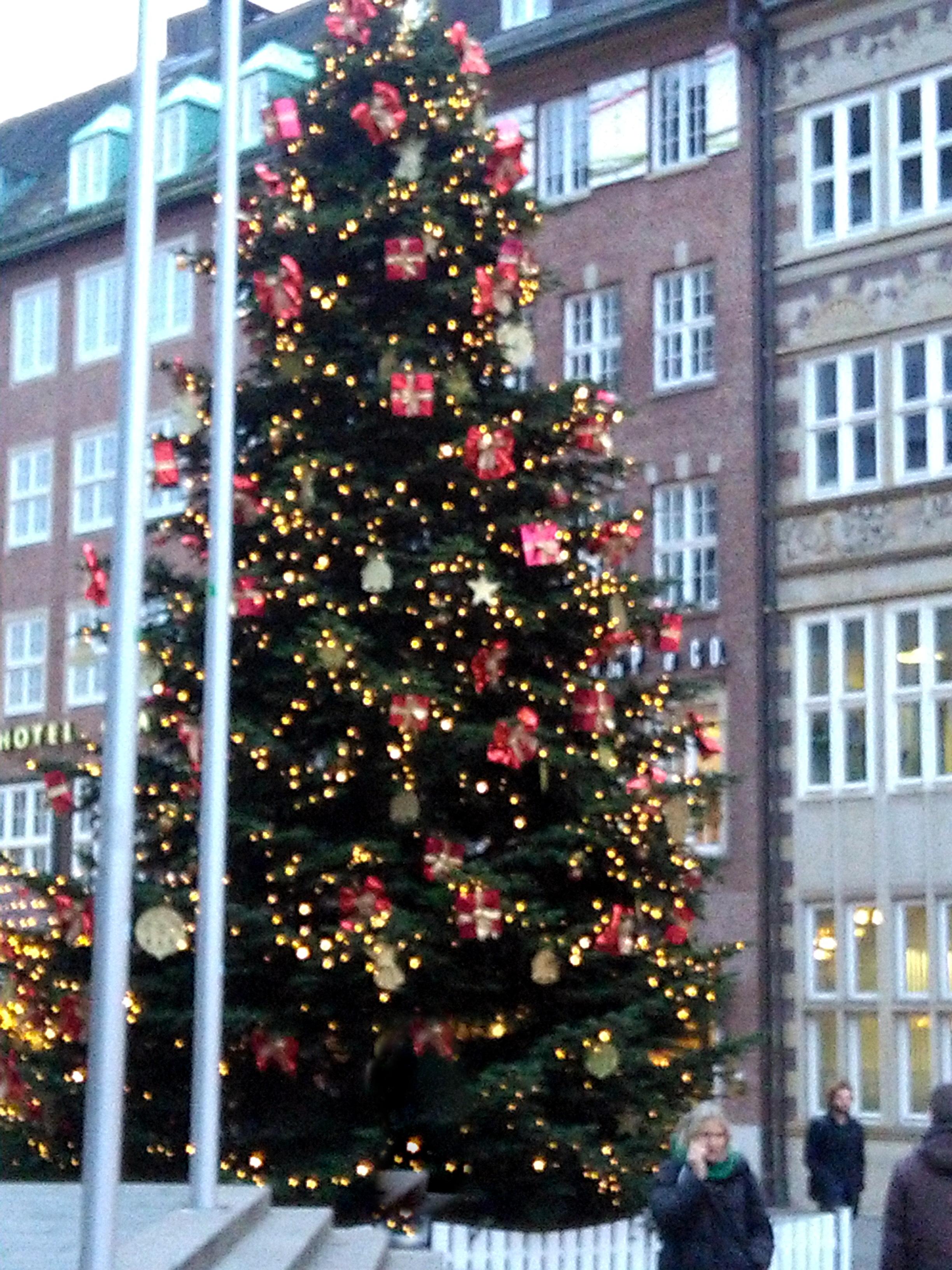 152937-weihnachtsmarkt-tannenbaum