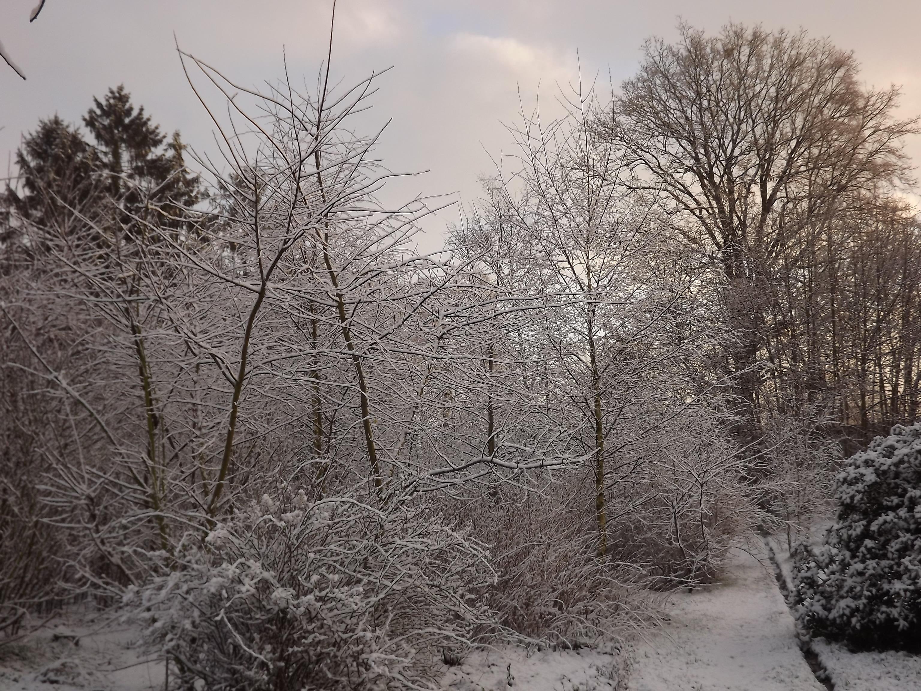 6885-verschneite-landschaft-morgenlicht