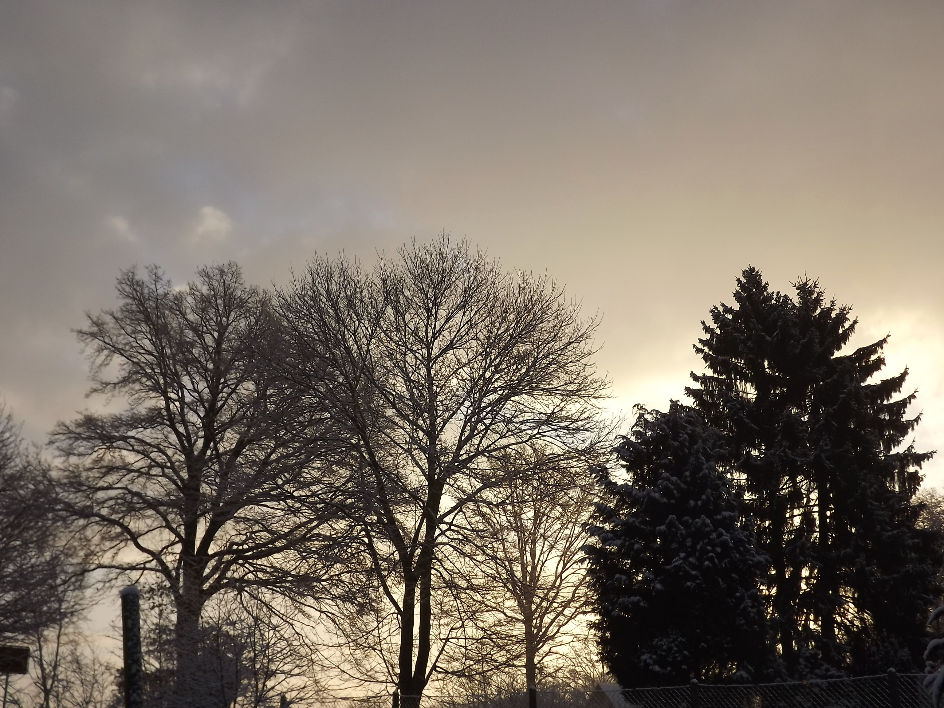 6890-verschneite-landschaft-morgenlicht