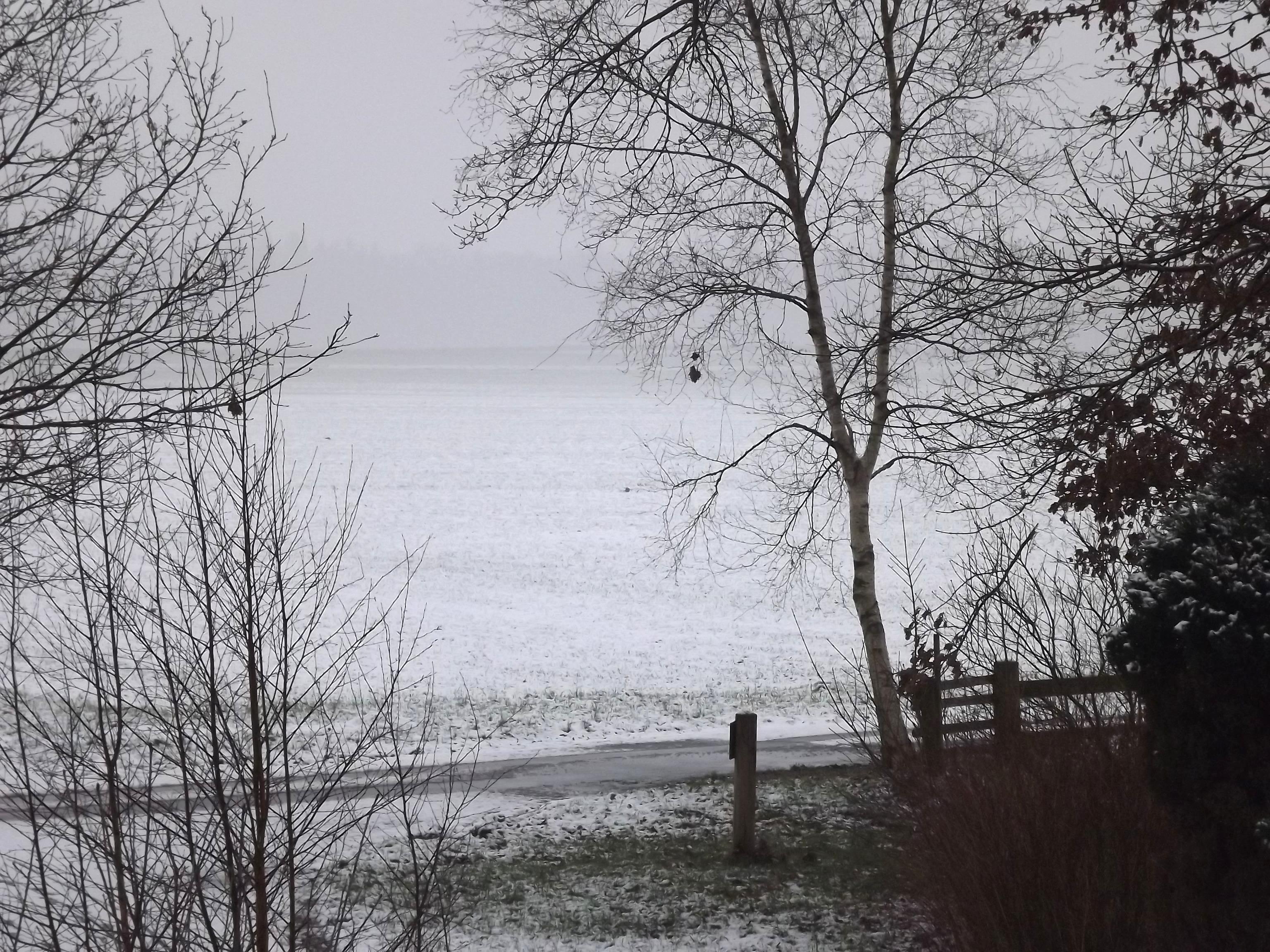 6903-verschneites-feld