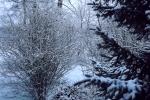 6867-verschneit