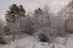 6891-verschneite-landschaft