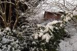 6895-verschneite-landschaft