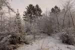 6896-verschneite-landschaft