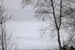 6904-verschneites-feld