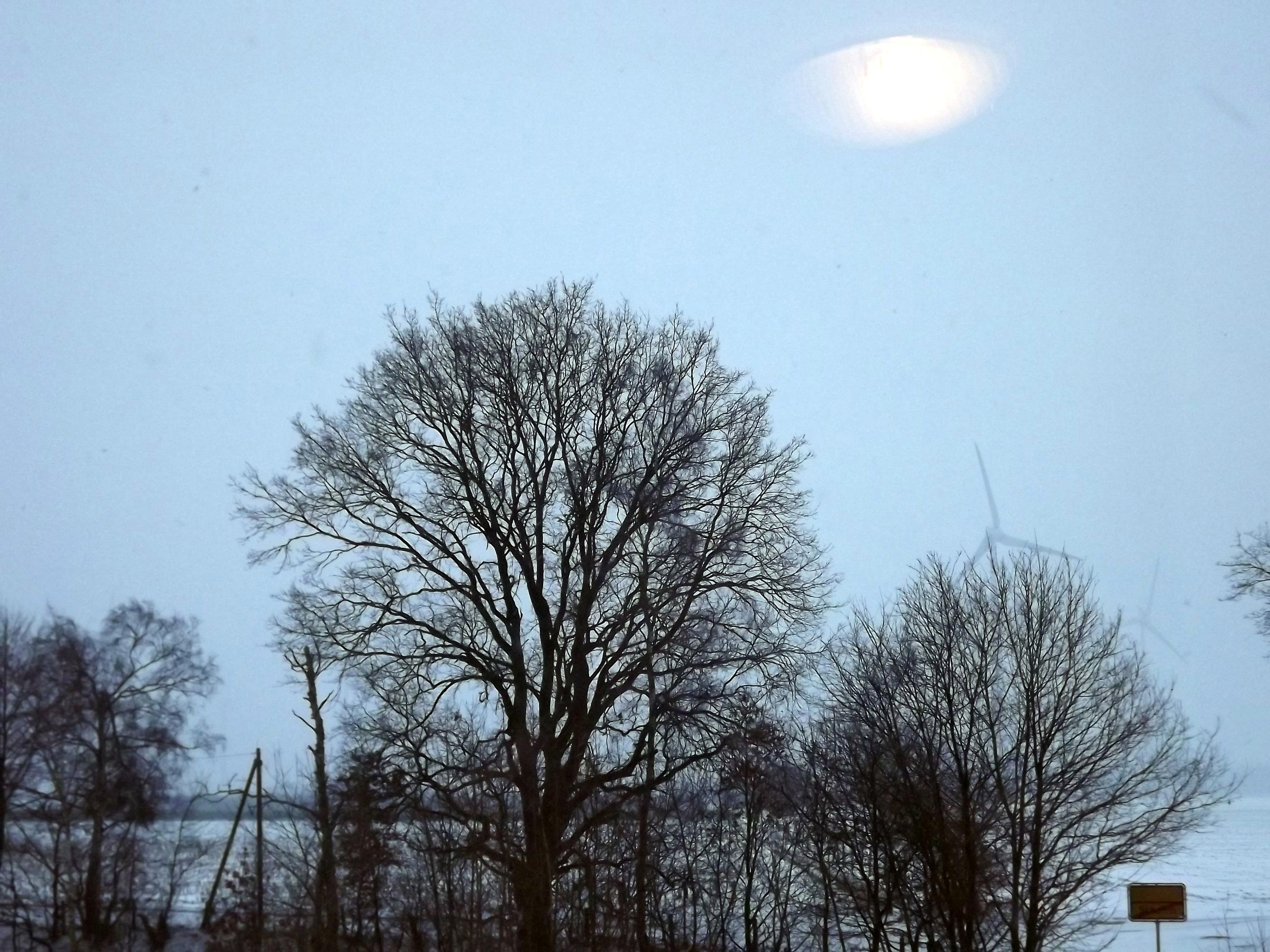 frostig-spiegelung-ufo-4604