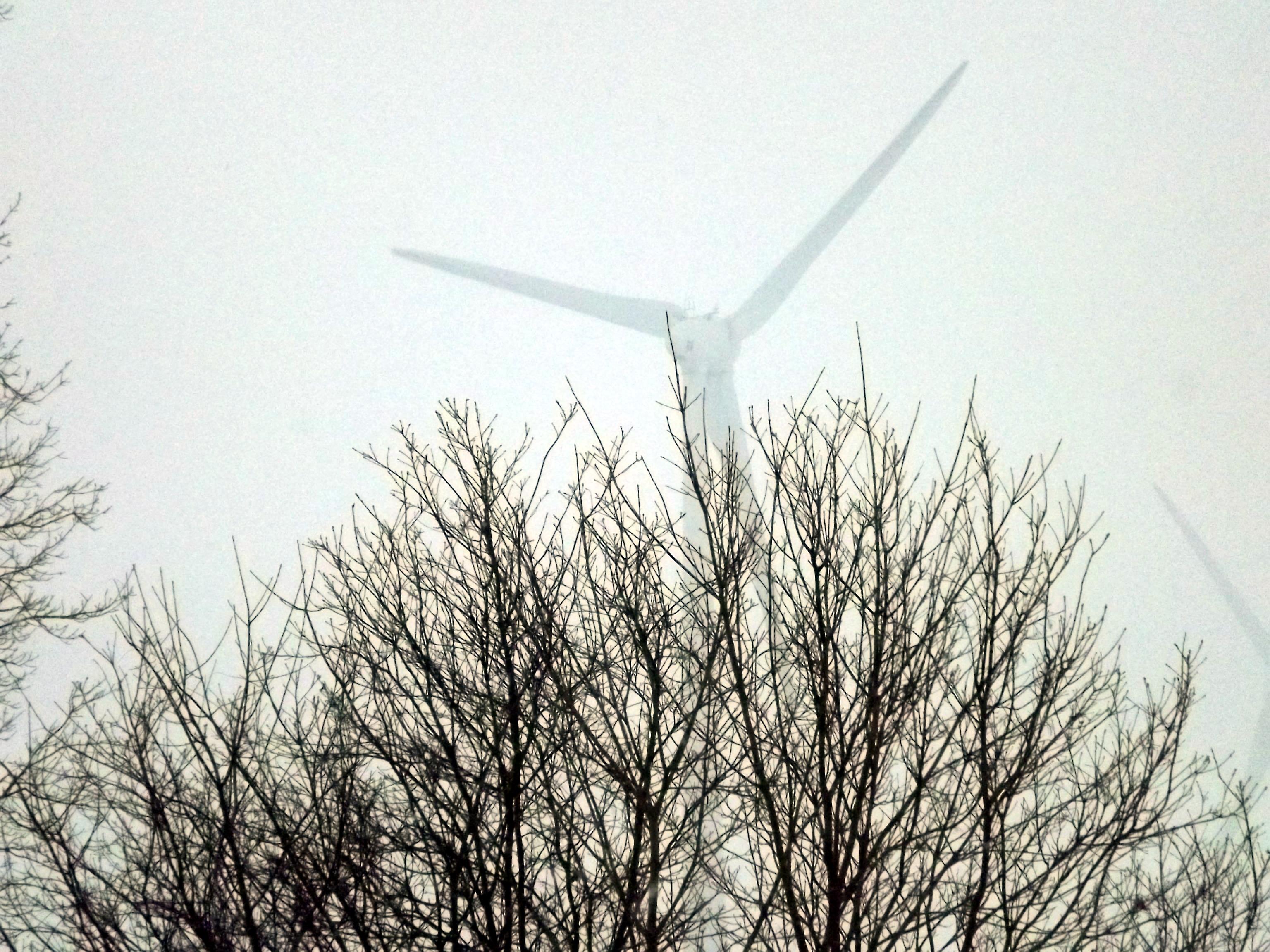 frostiger-nebel-windrad-4606