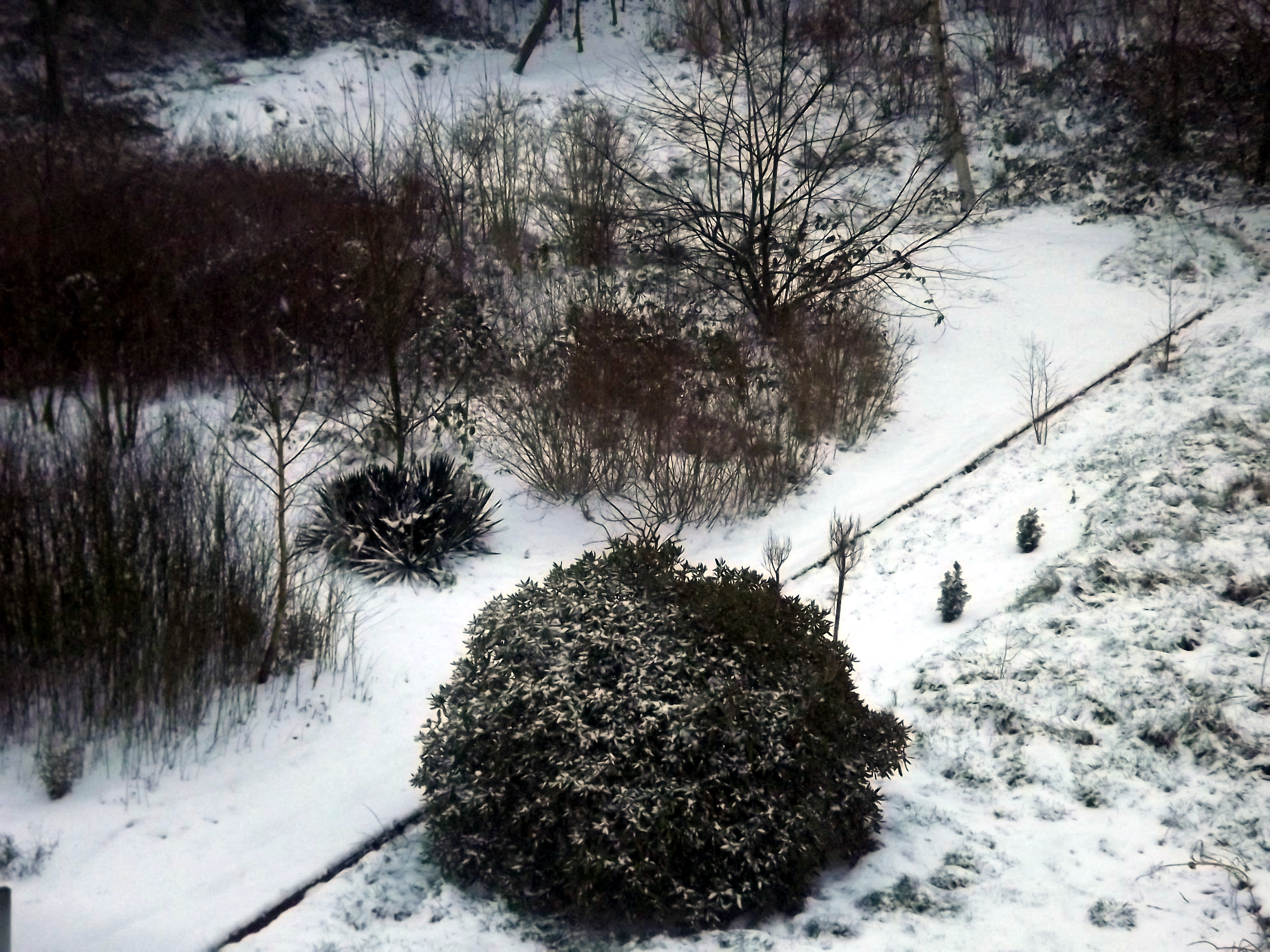 schneelandschaft-aus-der-luft-4609