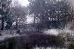 leicht-verschneit-4619