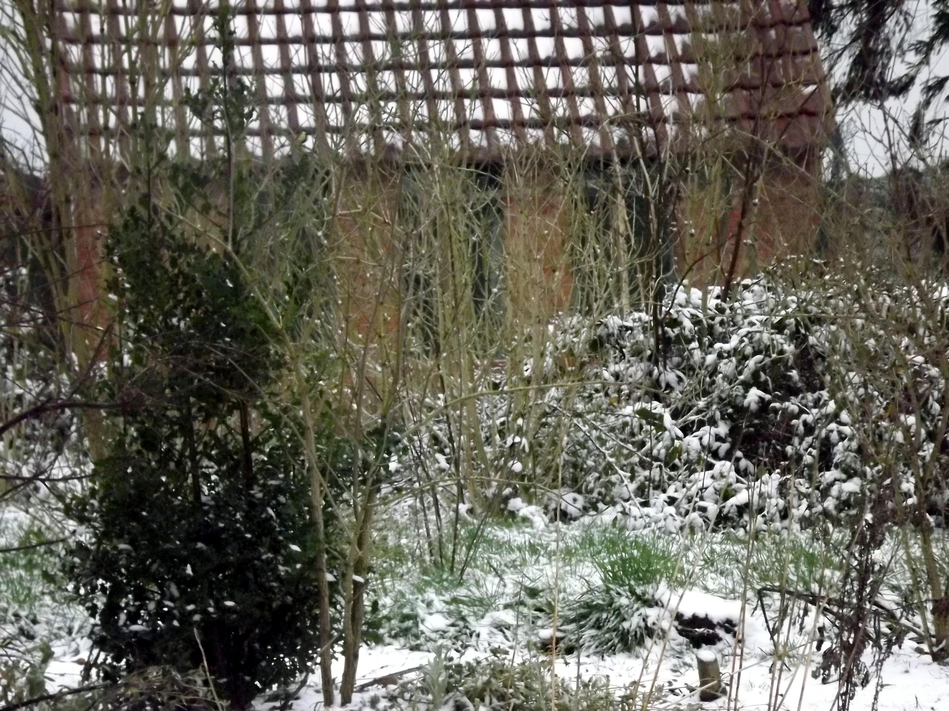 verschneites-haeuschen