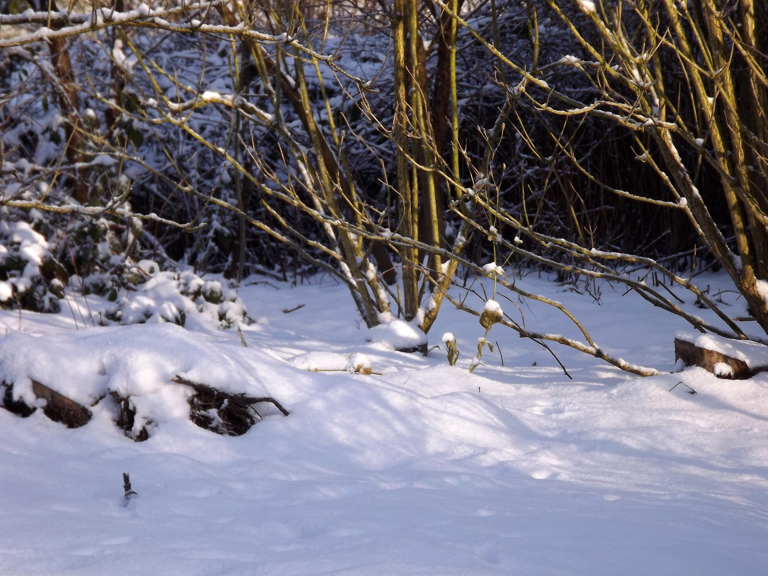 5739-schneeverwehungen