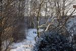 5723-frost-und-eis