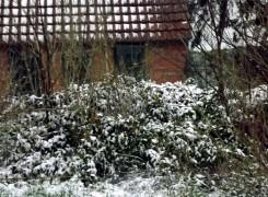 haeuschen-im-schnee